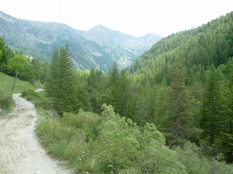 Le Cheval De Bois   Les Activit U00e9s Dans La Vall U00e9e